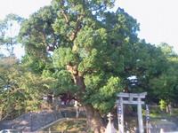 Kumamoto00